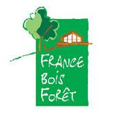 FRANCE BOIS FORET